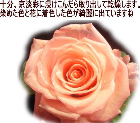 京淡彩仕上げ